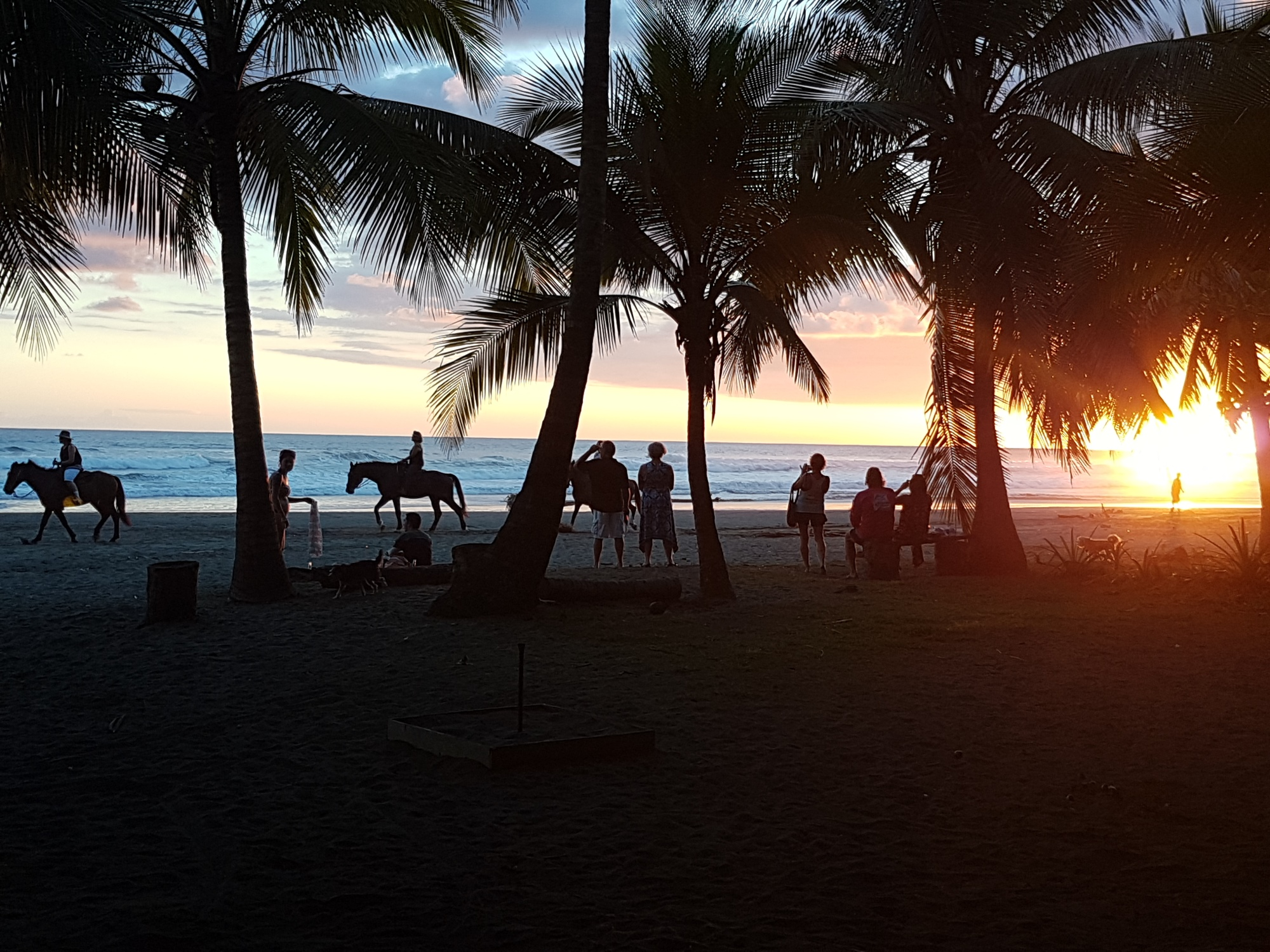 sunset horseback ride on the beach