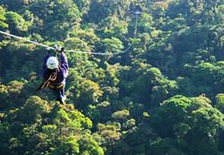 canopy zipline toue