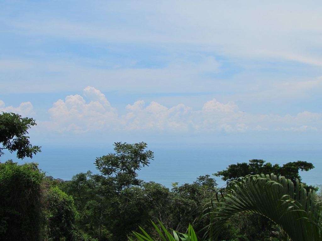 947 Dominicalito Ocean View32.JPG