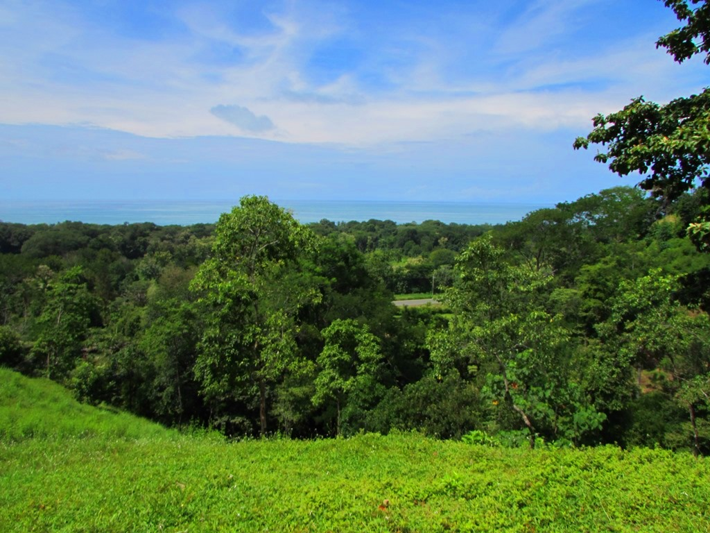 945 Dominical Ocean View107.JPG