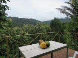 954-Costa-Rica-Real-Estate-Dominical 1028.JPG