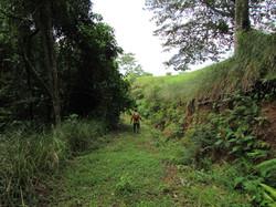 945 Dominical Ocean View121.JPG