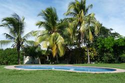 952 Tarcoles Costa Rica 148.jpg