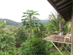 954-Costa-Rica-Real-Estate-Dominical 1017.JPG