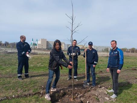 Ульяновский филиал АО «АРХБУМ» присоединился к международной акции «Сад памяти»
