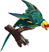 parrot-carolina-parakeet-bird-extinction