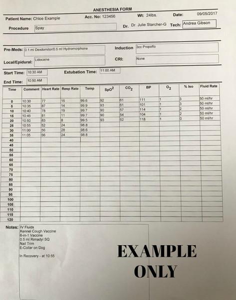 Anesthesia Sheet