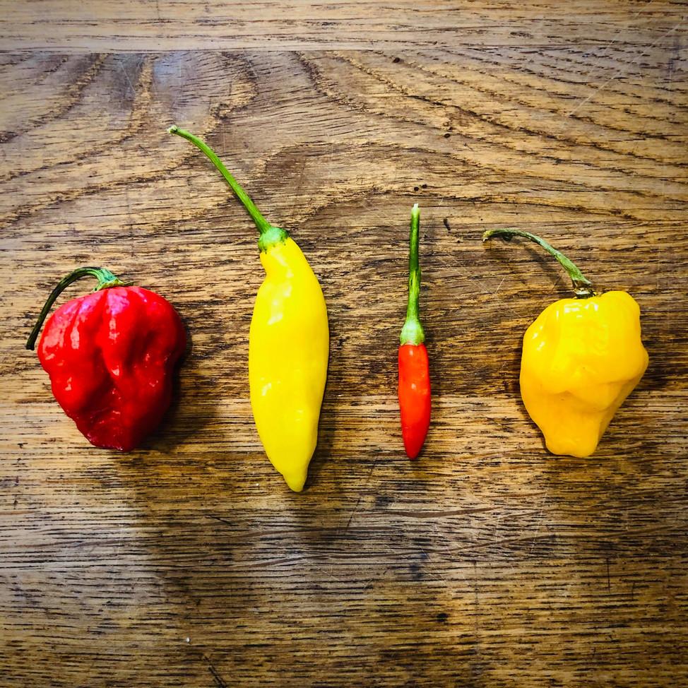 Chillies & Hot Sauce
