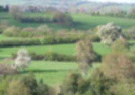 Distance View.JPG