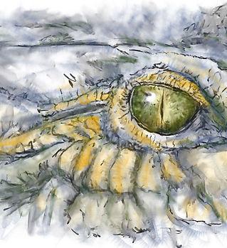 watchful eye, crocodile, alligator