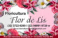 flor de lis.jpg