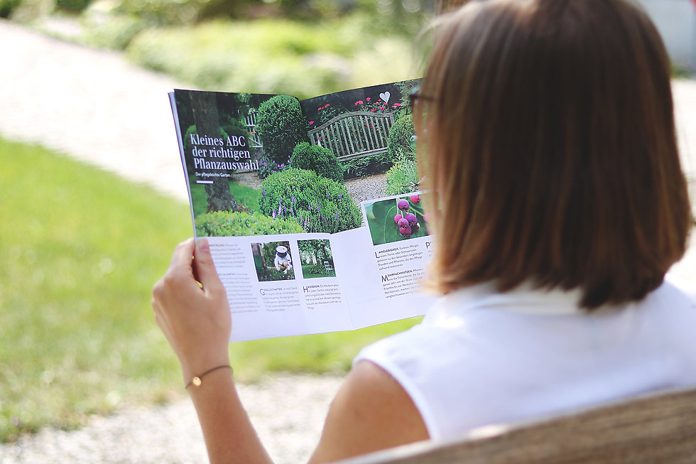 Editorial design, Rizago design