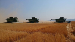 high plains harvesting 2