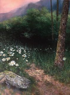 Daisy Path in the Appalachians