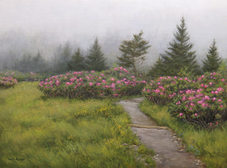 Foggy Morning at Carvers Gap