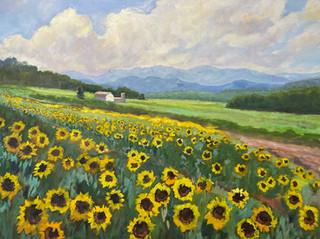 Jean Rupprecht - Sunflowers 30x40 (2021_09_15 02_40_35 UTC).jpg