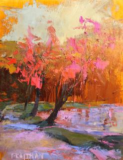 Bass Lake Fall Study