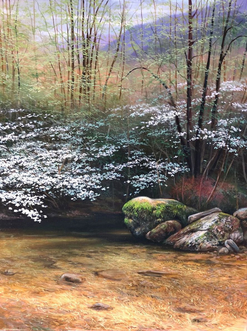 Dogwoods Along a Mountain Stream