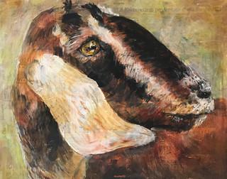 Joe's Goat