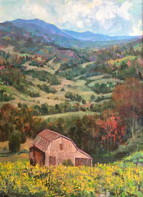 Hillside Barn with Yellow Flowers