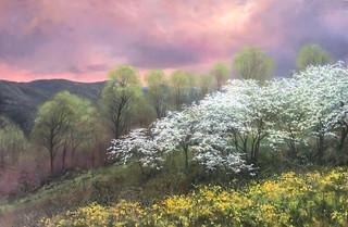 Blue Ridge Dogwoods
