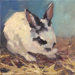 Rabbit in the Hay