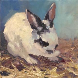 Rabbit in the Hay