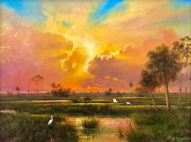 Sunset Everglades