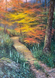 High Country Autumn Trail