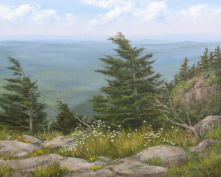 Summer Day On Grandfather Mountain