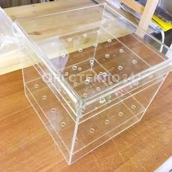 Прозрачный бокс для цветов из оргстекла