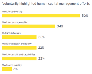 Voluntarily highlighted human capital management efforts