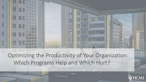 Optimizing the Productivity of Your Organization: Which Programs Help and Which Hurt?