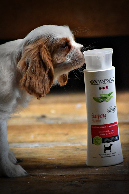 Shampoing anti-parasitaire pour chien au géraniol et à l'aloé vera