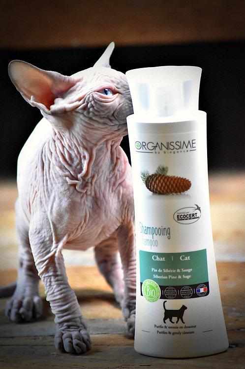 Shampoing BIO chat et chaton ( dès 3 mois )
