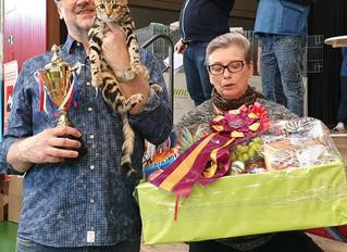 Orietta des Griffes de Feu est Meilleur chat de l'exposition toutes races confondues !!!