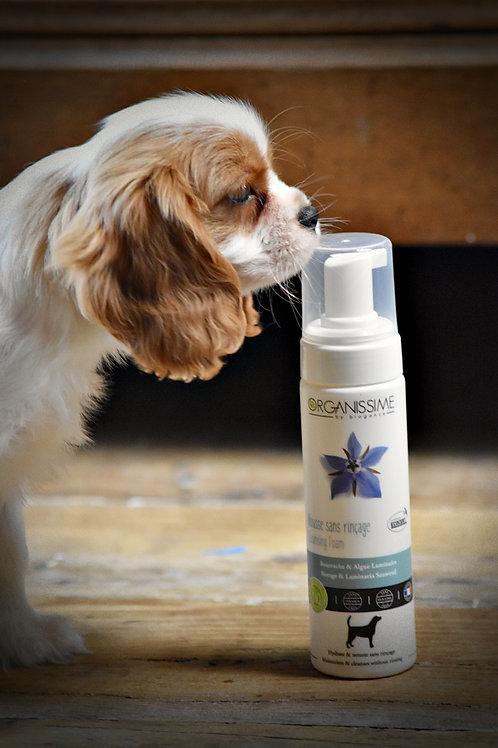 Mousse sans rinçage BIO pour chiens , chiots , chats et chatons
