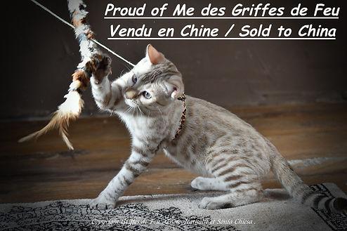 proud of me chine.jpeg