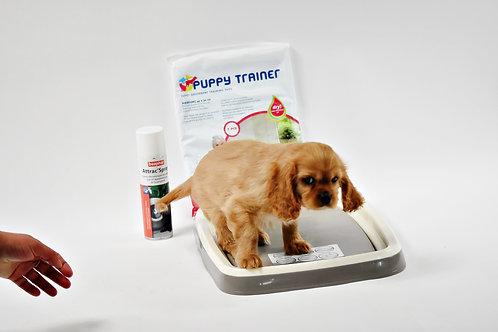 Puppy trainer + spray attractif pour chiot , 2 tailles et 2 prix