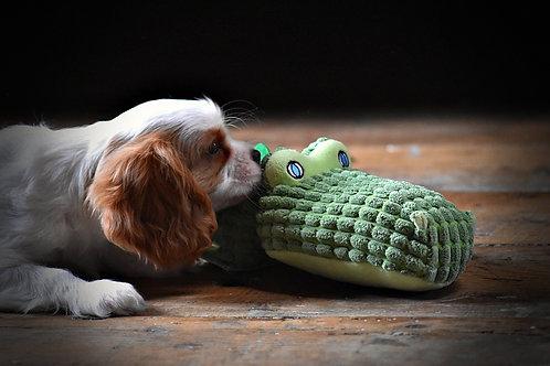 Doudou crocodile sonore pour chiot et chaton