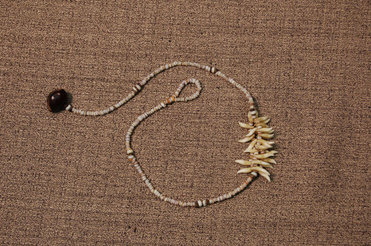Porpoise Tooth Necklace
