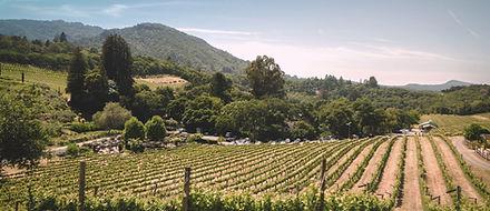 Sonoma Valley Wine Tours