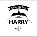 HARRY_500.png