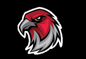 Atlanta Falcons Germany Logo original.pn