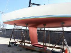 Nautilus Bottom