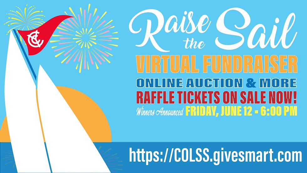 Virtual Fundraiser Slide Poster-01.png