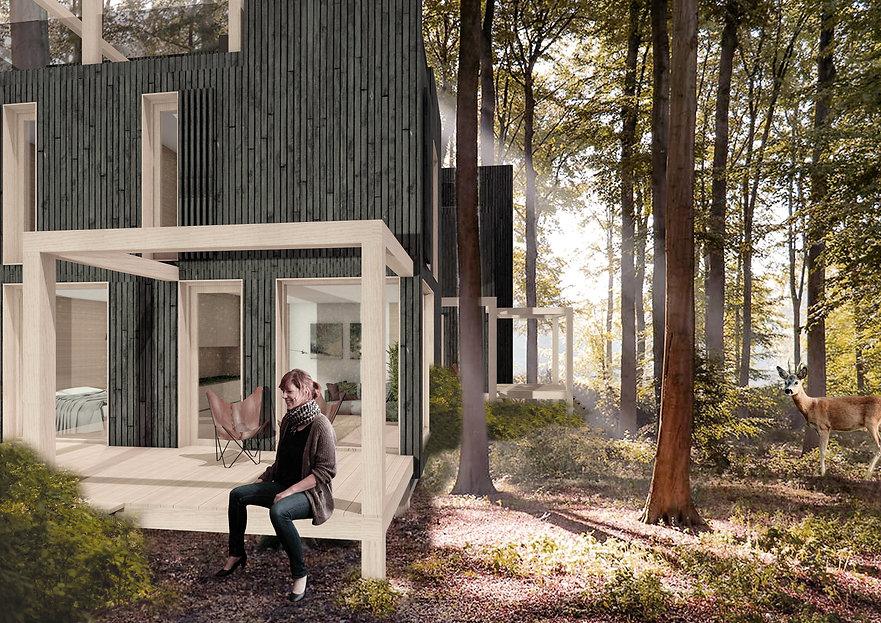 Olaertsduyn 3D huis links.jpg