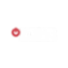 ontour_management_2019_logoAF-02.png