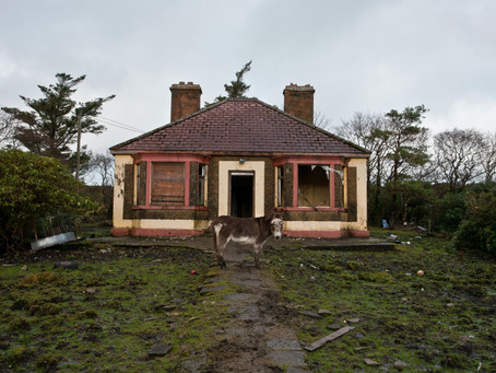 Considering a Distressed Property?