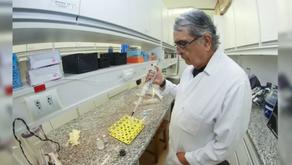 Unicamp desenvolve composto natural para tratamento de infecções